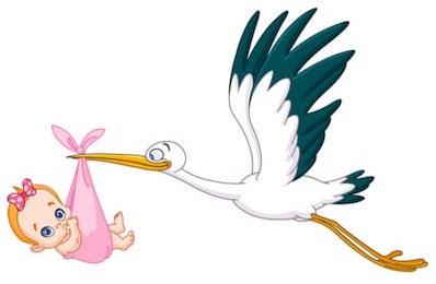 https://nep.org.gr/wp-content/uploads/2020/06/stork-carrying-baby-girl-260nw-133825655.jpg